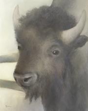 buffalo-girl3