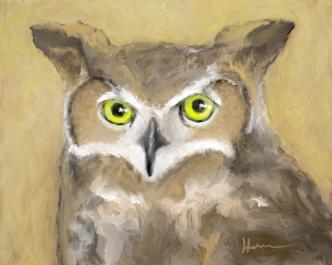 night-owl2