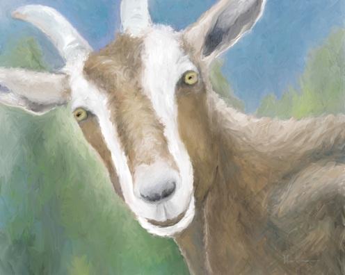 something-got-your-goat2